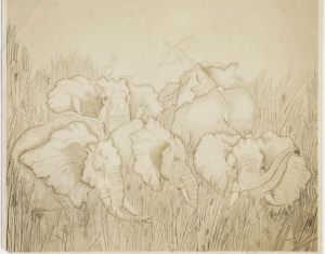 Elephants in tall grass, a silverpoint by Thelma Wood